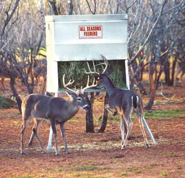 Atascosa Deer Blinds 5x9 Deer Hunting Blinds Atascosa